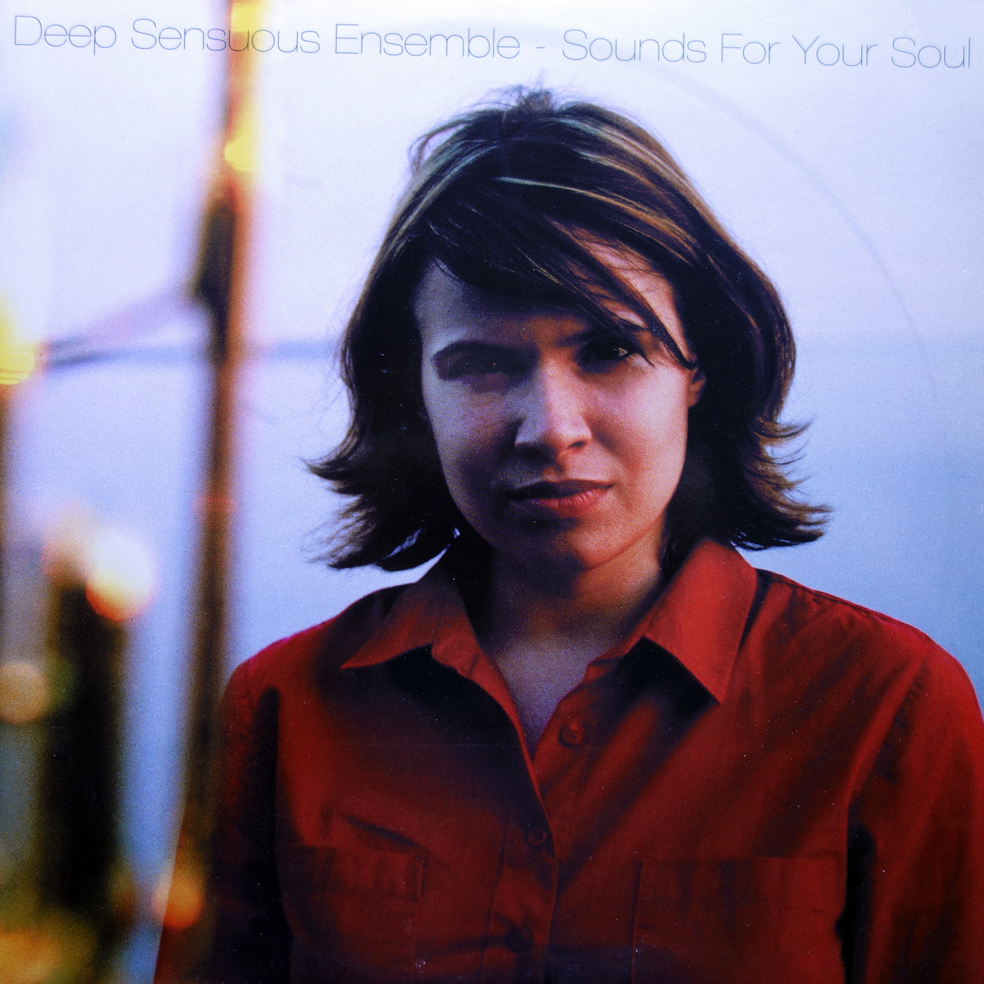 2xLP Deep Sensuous Ensemble ‎– Sounds For Your Soul