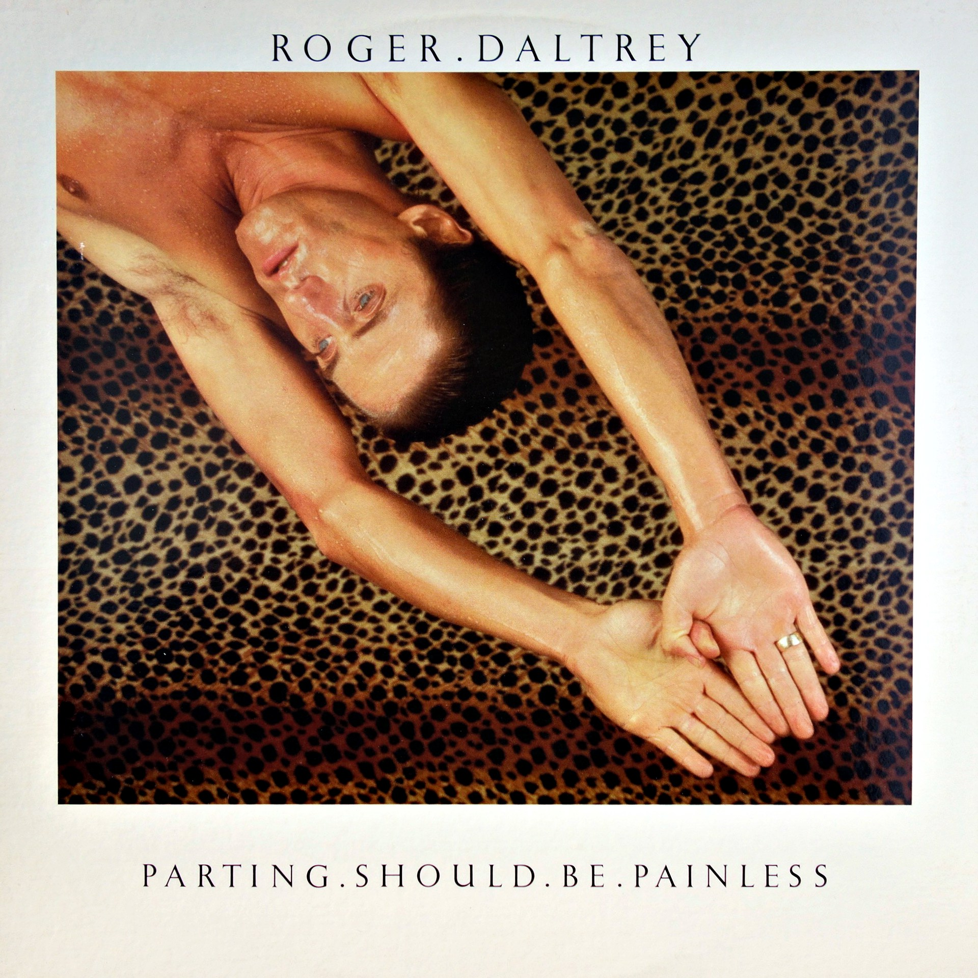 LP Roger Daltrey ‎– Parting Should Be Painless