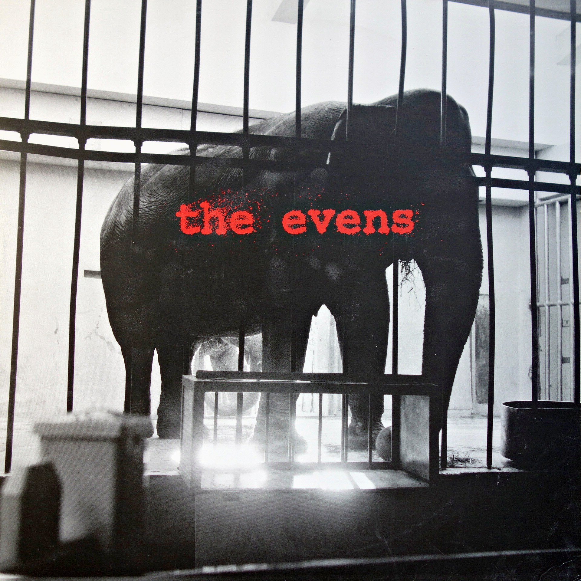 LP The Evens ‎– The Evens