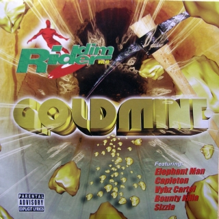 2LP Various ‎– Riddim Rider Vol. 10 Goldmine