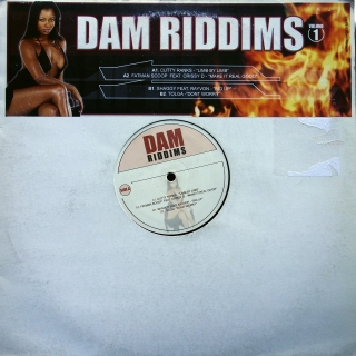 "12"" Various ‎– Dam Riddims Volume 1"