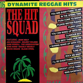 LP Various ‎– The Hit Squad - 16 Dynamite Reggae Hits